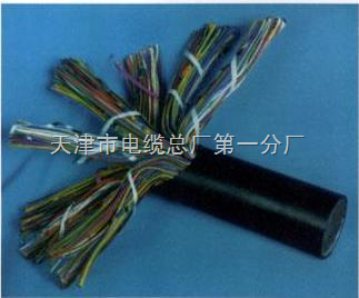 低烟无卤电缆型号WDZ-HYA