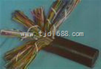 *国标计算机屏蔽控制电缆DJYVP大全