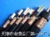 NH-KVV大量销售-NH-KVV耐火电缆 NH-KVVP耐火屏蔽控制电缆